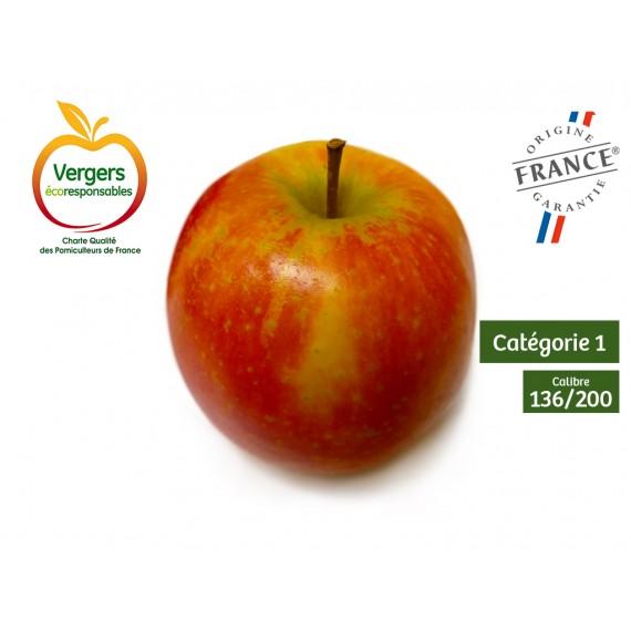 Pommes DELBARD ESTIVAL